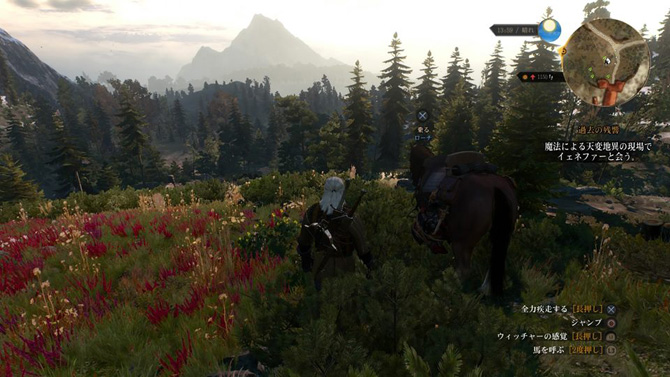 witcher3-feature4