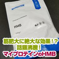 hmb_t