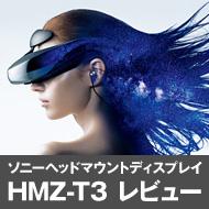 hmz_t